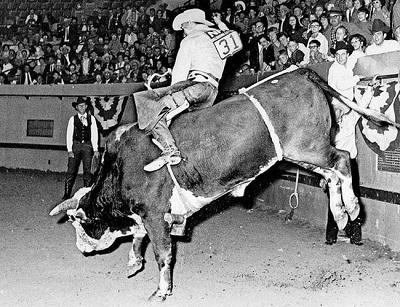 school-chalao-bull-riding-history1 image