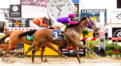 school-chalao-criticisms-on-horse-racing image